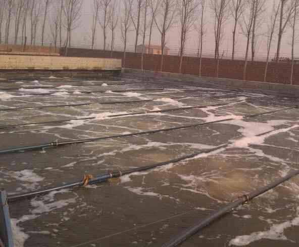 兴济污水厂